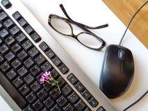 有桃红色春天花的,老鼠键盘 免版税库存图片