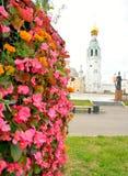 有桃红色花的花圃 免版税库存照片
