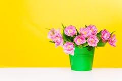 有桃红色花的绿色罐在黄色背景 库存图片