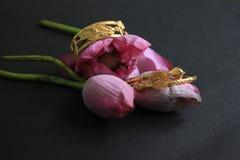 有桃红色花莲花的金镯子在黑色 金首饰 免版税图库摄影