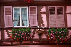 有桃红色视窗的家 免版税库存照片