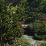 有桥梁的庭院 免版税库存图片