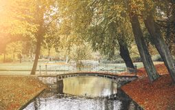 有桥梁的池塘在公园在秋天 库存图片