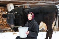 有桶的妇女奶牛的在冬天 图库摄影