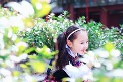 有棒棒糖逗人喜爱的亚洲矮小的美好的女孩戏剧的小女孩秋天在城市公园 免版税图库摄影