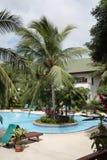 有棕榈、太阳懒人在庭院旁边和大厦的游泳池人工岛 图库摄影
