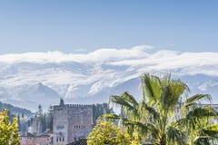 有棕榈树和白色内华达山的阿尔罕布拉宫 免版税库存照片
