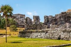 有棕榈树和蓝天的, Tu老被破坏的古老玛雅寺庙 免版税库存图片