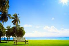 有棕榈树和轻便马车休息室的艺术沙漠热带海岛 免版税库存图片
