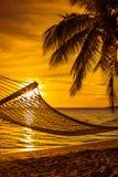 有棕榈树的吊床在日落的一个美丽的海滩 免版税库存照片