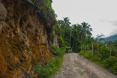 有棕榈树的残破的混凝土路在夏天 菲律宾 巴伦西亚,海岛内格罗斯岛 库存照片