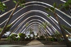 有棕榈树的温室在夜城市 西班牙 库存照片