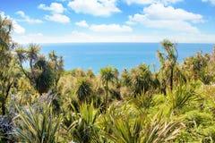 有棕榈树的热带海滩盐水湖 免版税图库摄影