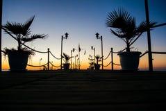有棕榈树的码头在五颜六色的日出 库存图片