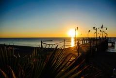 有棕榈树的码头在五颜六色的日出 库存照片