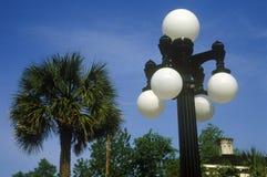 有棕榈树的路灯柱在背景,查尔斯顿, SC中 免版税库存图片