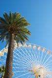 有棕榈的全景轮子 免版税库存图片