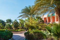 有棕榈的美丽的公园在五个星旅馆里。 库存照片