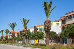 有棕榈的街道在路旁在唐基尔,摩洛哥 免版税库存图片