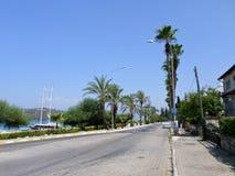 有棕榈的街道 免版税图库摄影
