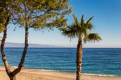 有棕榈的西西里人的江边 免版税库存图片