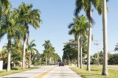 有棕榈的路在迈尔斯堡,佛罗里达 免版税库存照片