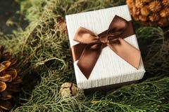 有棕色弓的礼物盒在冷杉分支 库存图片