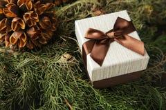 有棕色弓的礼物盒在冷杉分支 图库摄影