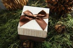 有棕色弓的礼物盒在冷杉分支 库存照片