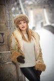 有棕色毛皮盖帽和夹克的可爱的妇女享受冬天的 摆在反对桥梁的时兴的白肤金发的女孩侧视图  免版税库存图片