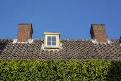 有棕色瓦片、管子和绿色叶子的屋顶 库存图片