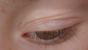 有棕色眼睛的向右观看和向左观察周围的白种人人特写镜头射击  影视素材