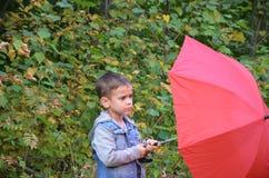 有棕色眼睛的英俊的逗人喜爱的男孩在一件牛仔裤夹克在有一把红色伞的秋天公园, 图库摄影