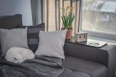 有棕色长沙发的舒适家庭娱乐室 图库摄影