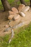 有棕色颜色一朵石花在城市公园 夏天 免版税库存图片