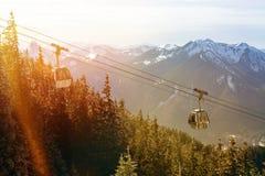 有森林和多雪的山峰的空中览绳 库存照片