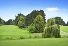 有森林的田园诗高尔夫球场 库存照片