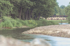 有森林围拢的岩石海岸线的河 免版税库存图片