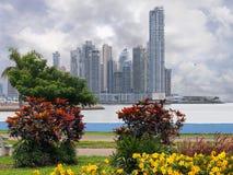 有植物和风雨如磐的天空的摩天大楼 免版税库存图片