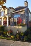 有植物的五颜六色的住宅房子 库存图片