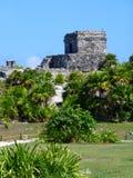有植物的寺庙Tulum的在墨西哥 库存照片