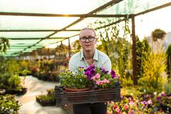 有植物的愉快的花匠 库存照片