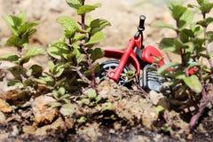 有植物的摩托车玩具 免版税库存图片