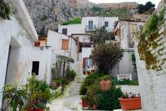有植物的白色房子在Anafiotika,雅典 库存照片