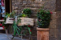 有植物的箱子沿佛罗伦萨,意大利狭窄的街道的一辆绿色意大利自行车的  库存照片