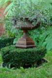 有植物&蕨的华美的古典庭院缸 图库摄影