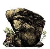 有植被和草的大石鹅卵石 图库摄影