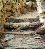 有植被的台阶在古巴 库存图片