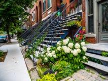 有楼梯的典型的蒙特利尔邻里街道 免版税图库摄影