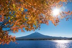 有槭树叶子的富士山 免版税库存照片